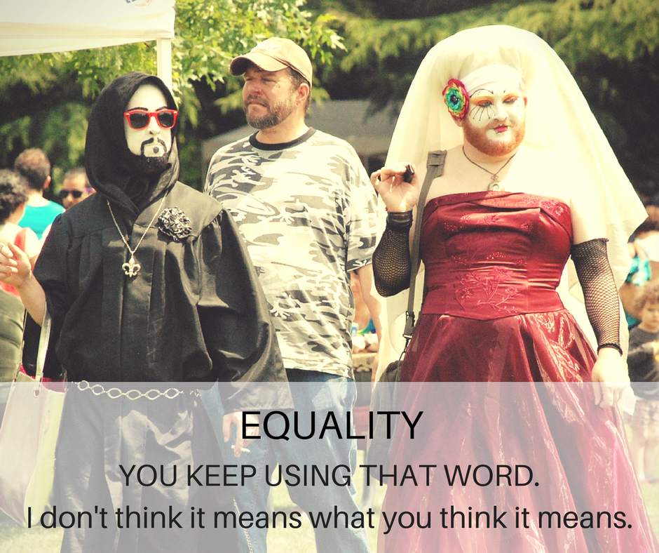 Equality: You Keep Using That Word